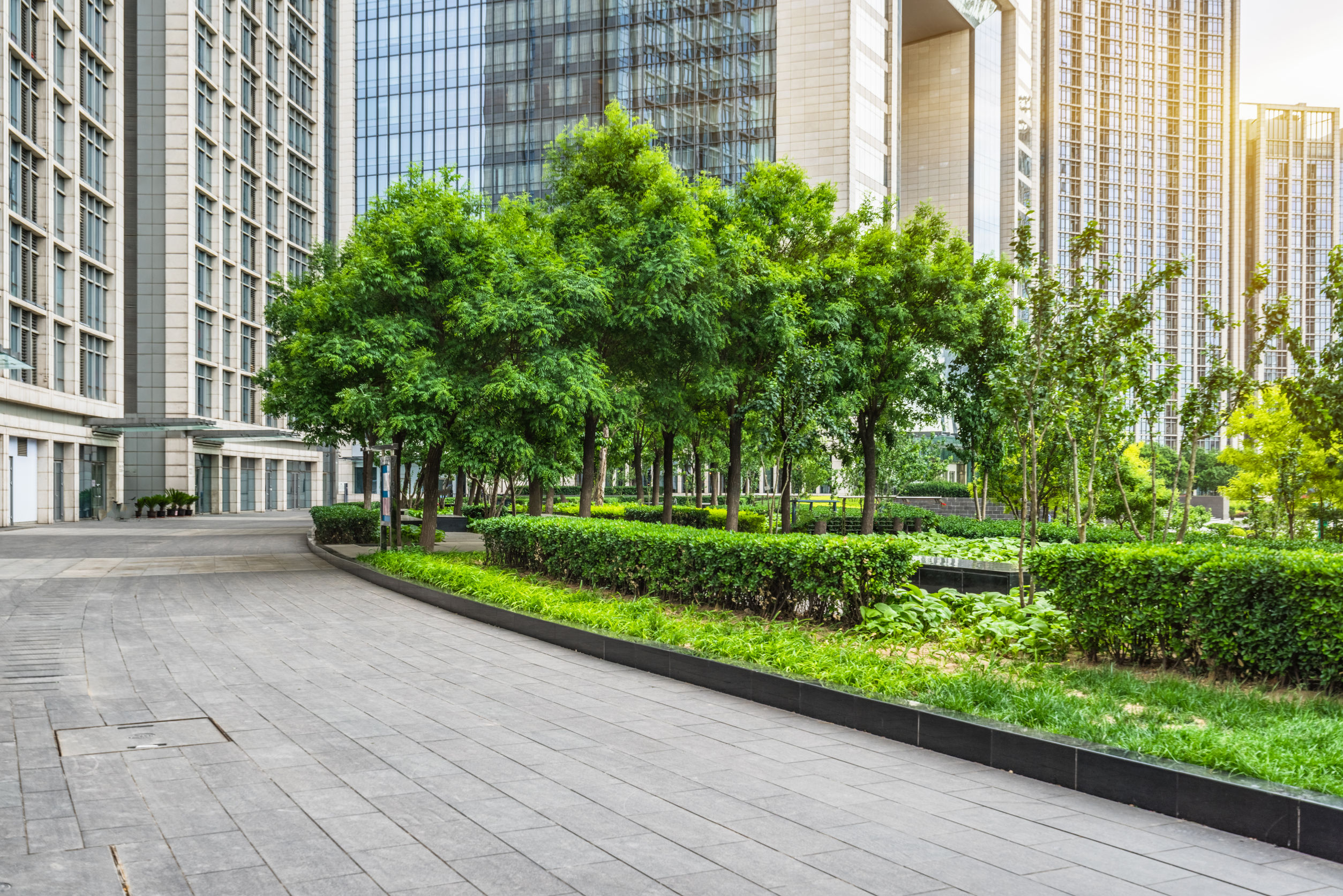 Reimagine Your Property: Checklist for Designing Commercial Landscapes